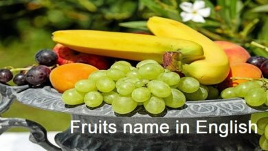 Photo of Fruits Name in English to Hindi for class 1 to 10